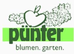 Image Pünter
