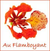 Image Au Flamboyant