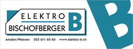 Image Elektro B Koni Bischofberger