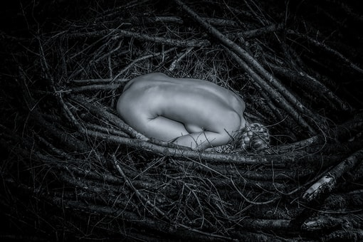 Image fotostudio z-arts.ch