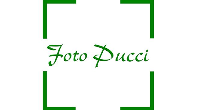 Immagine Foto Pucci S.a g.l.