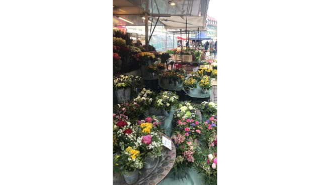 Immagine Blumen & Pflanzen