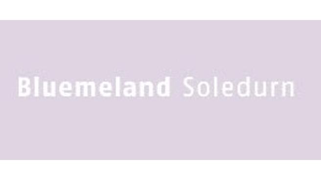 Bild Bluemeland Soledurn GmbH