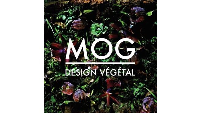 Immagine MOG Design Végétal Sàrl