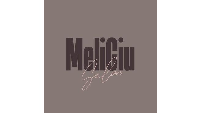 Image Salon MeliGiu
