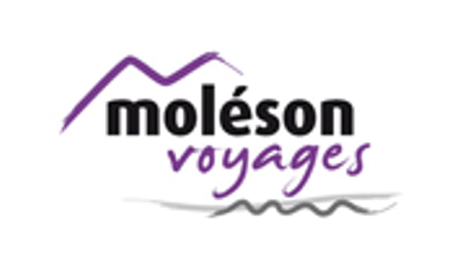 Image Moléson Voyages SA