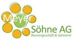 Image Meyer Söhne AG