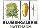 Photo Blumengalerie Mattmann AG