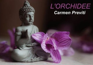 Photo Institut L'Orchidée