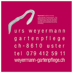 Bild Weyermann Urs Gartenpflege GmbH