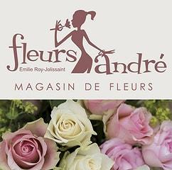 Bild Fleurs André