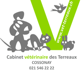 Immagine Cabinet vétérinaire des Terreaux