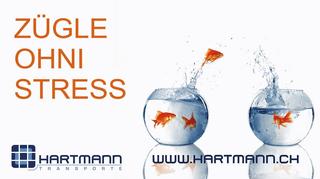 Immagine Hartmann Transporte AG