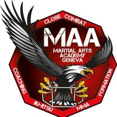 Bild Martial Arts Academy Geneva Sàrl