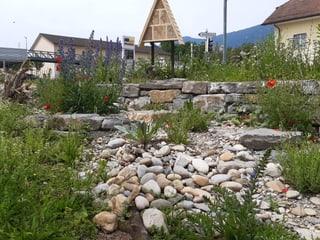 Bild frohNatur Allemann / naturnaher Gartenbau