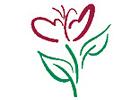 Bild Schürch Fleurs