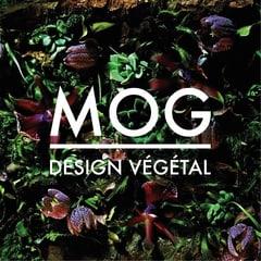 Photo MOG Design Végétal Sàrl