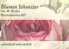 Bild Blumen Schweizer