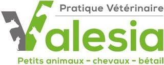 Immagine Pratique Vétérinaire Valesia SA