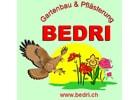 Photo BEDRI GMBH