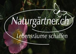 Immagine Naturgärtner.ch - Naturgarten Fachbetrieb Bioterra