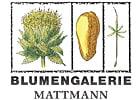 Immagine Blumengalerie Mattmann AG