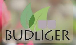 Immagine Budliger Garten