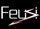 Bild Feusi électricité SA