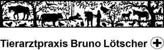 Bild Lötscher Bruno